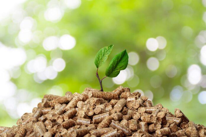 Pellet drzewny ekologiczne paliwo